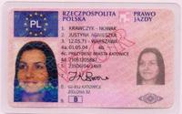 driver's license, driving licence